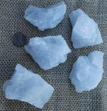 Blue and White Celestite Crystals (Mexico and Ohio, USA)