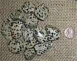 Dalmatian Jasper Shapes and Tumbles