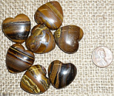 TIGER EYE HEARTS #2