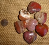 PETRIFIED WOOD HEARTS #1