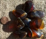 Blue Amber (Dominican Republic and Indonesia)