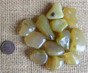 DENDRITIC YELLOW OPAL TUMBLES #1